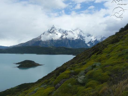 11-jan Torres del Paine (18)